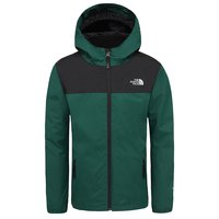 The north face Elden Rain Triclimate