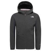 The north face Eliana Triclimate