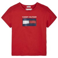 Tommy hilfiger Fun Graphic Flag