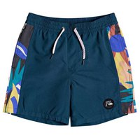 Quiksilver Arch Print Volley Youth 15